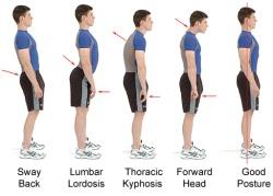 posture standing
